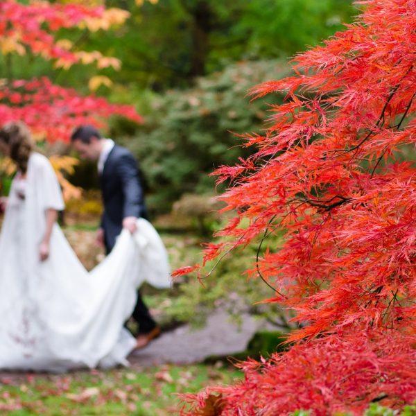 Herbst Hochzeit wedding-1017459-1280