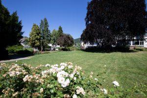 Villa-Leonhart-Event-Location-Park-2