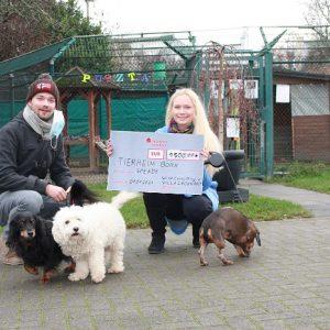 Spende für Tiere in Not
